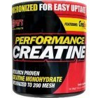 SAN - Performance Creatine, 300g